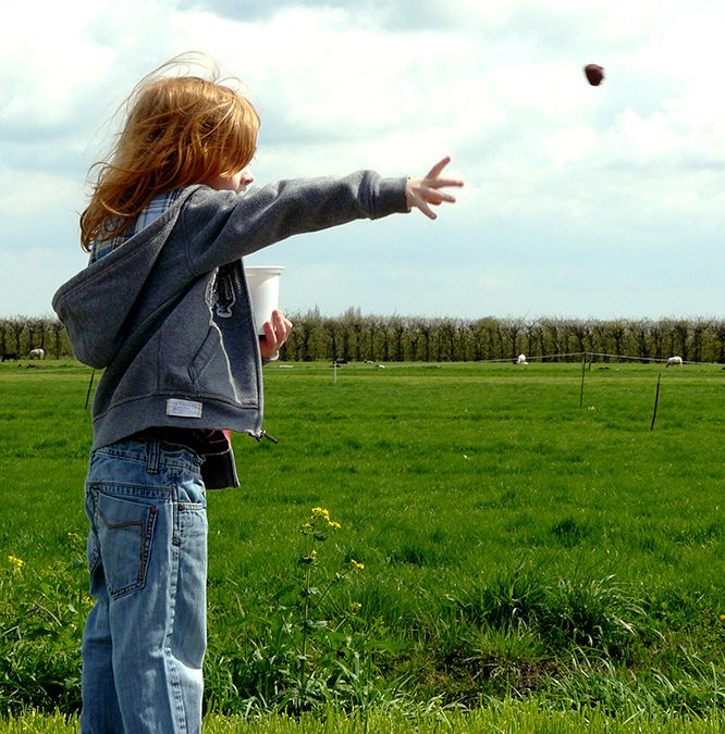 8 lekkere doe-dingen voor een vrije dag in de lente