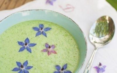 Sprokkelmaaltijd: deel je eten a la Potluck