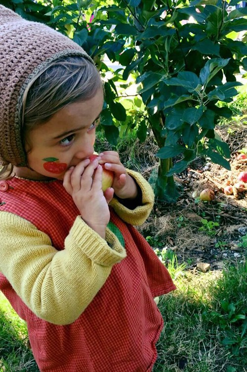 appelplukdag