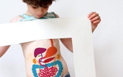 Anatomie: Hoe wordt poep gemaakt?