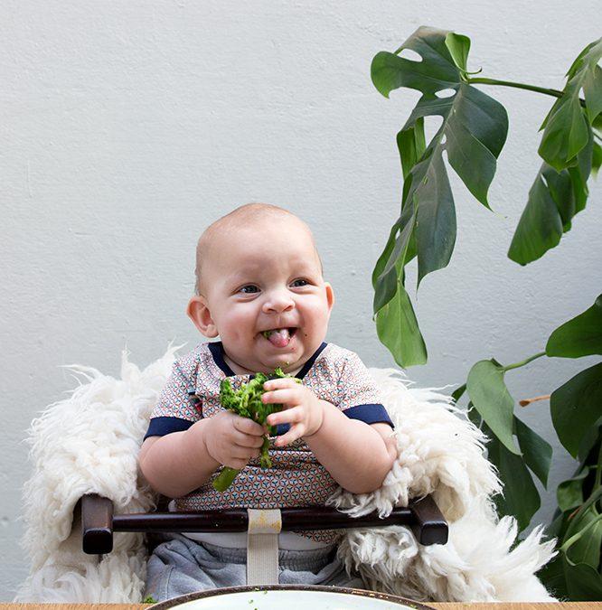 Bijvoeding vanaf 6 maanden