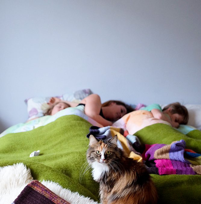 Samen slapen: Je komt er nooit meer vanaf