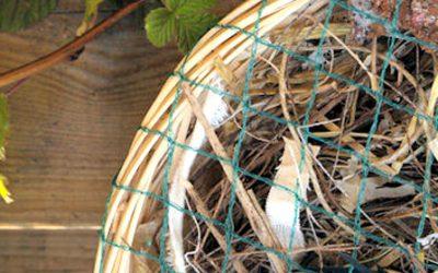 Nestelmandje maken voor de vogels