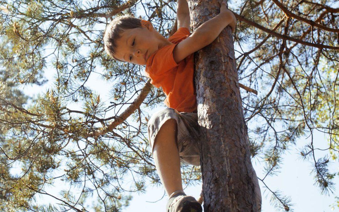 Waarom tegenslag zo goed is voor je kind