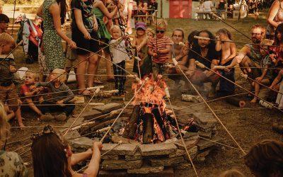 Vind je stam: tips van Anke